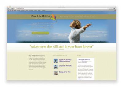 mlr-website